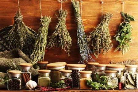 народная медицина для лечения мастопатии