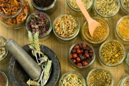 лечение фиброзно-кистозной болезни травами