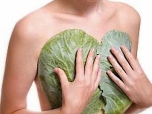 лечение мастопатии компрессом из капусты
