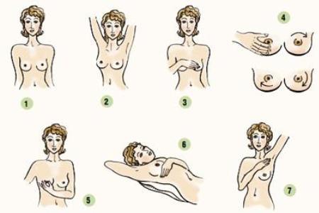 схема для самостоятельной диагностики груди