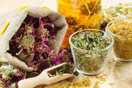 травы при лечении мастопатии
