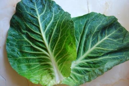 капустные листы